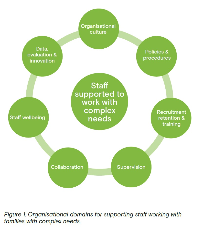 Infographic depicting the organisational domains for supporting staff working with families with complex needs